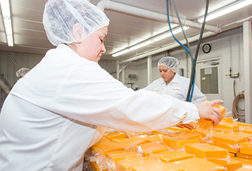 Wisconsin Cheese Product Development
